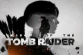 Pronti per il download i nuovi driver ottimizzati per Shadow of the Tomb Raider.