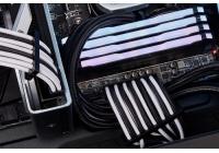 Non solo kit di cavi e prolunghe PCIe, ma anche una pasta termica ad alte prestazioni.